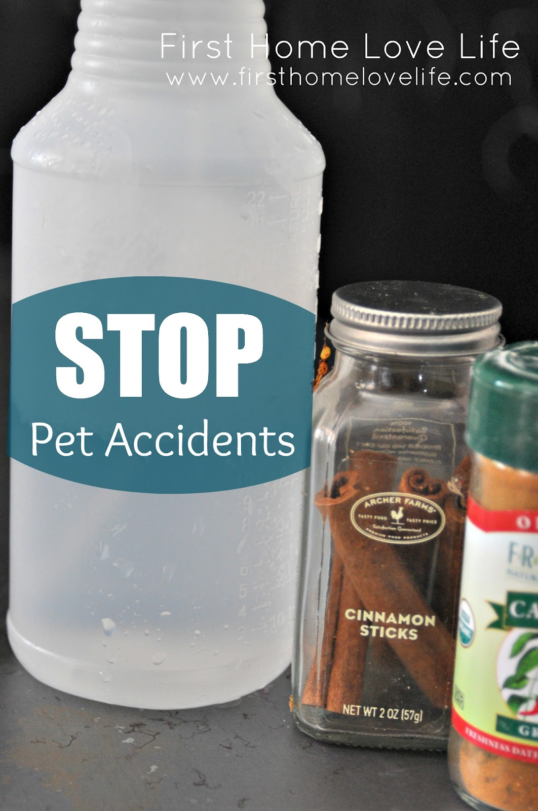 How to: Stop Pet Accidents! - First