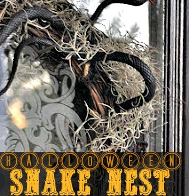 How to Make a Snake Nest Wreath for Halloween