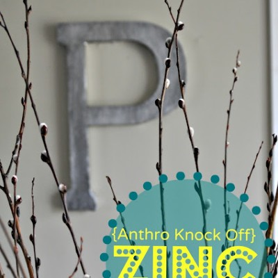 Anthropology *Zinc* Initial Knock Off