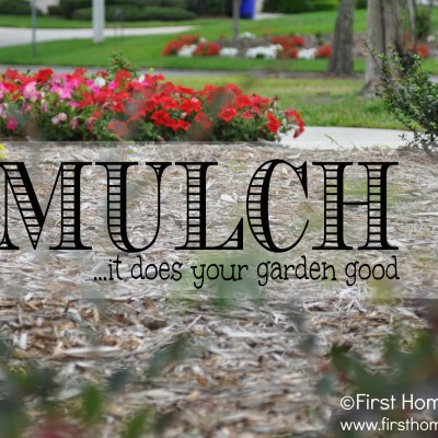 Mulch to do About Nothing!