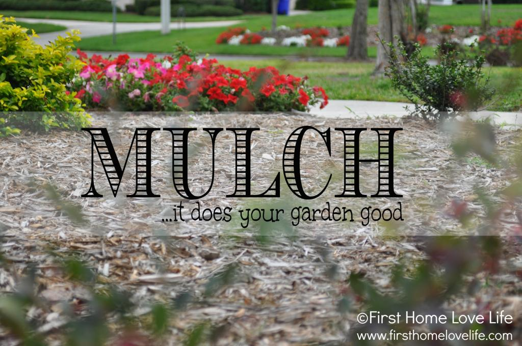 photo mulch_zpsd7f326cc.jpg