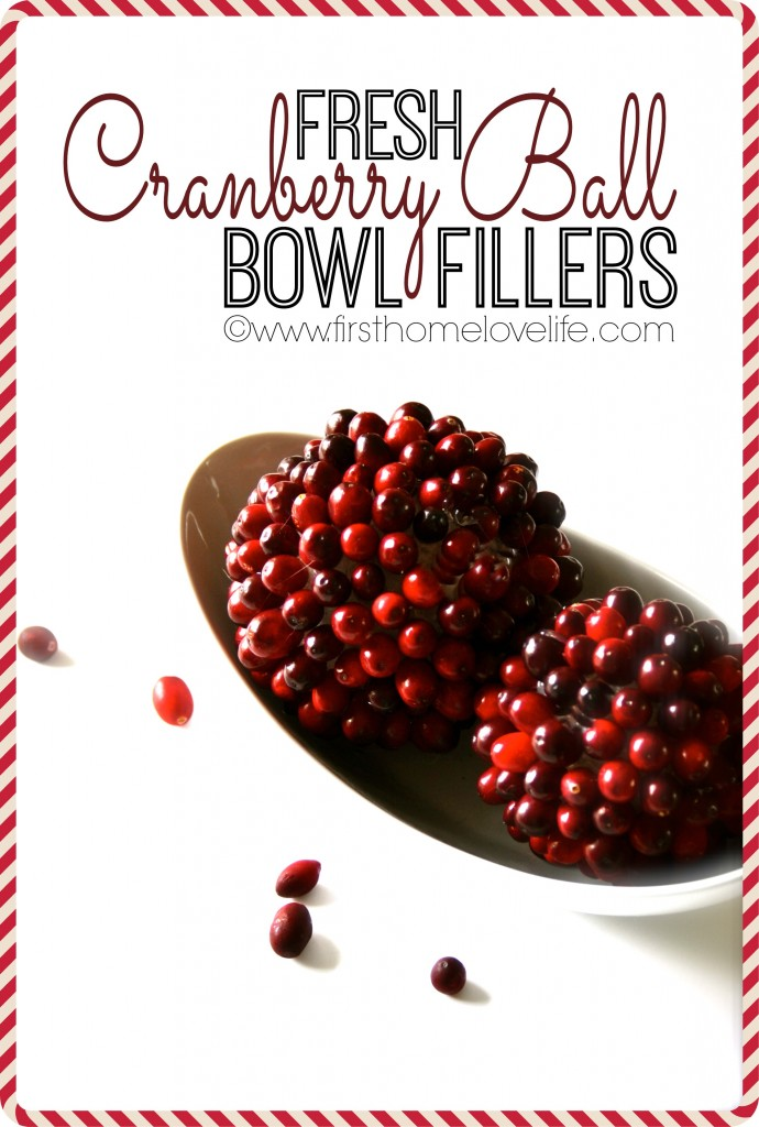 CRANBERRY BALL BOWL FILLERS