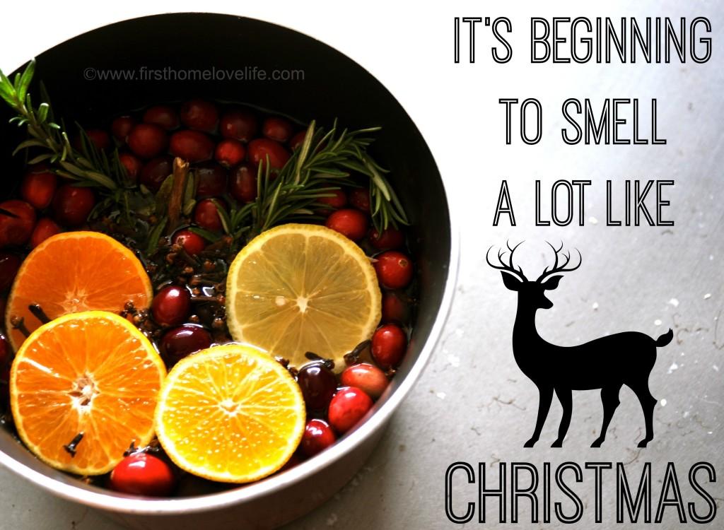 smelllikechristmas