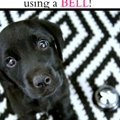 Potty Training Puppy Using a Bell