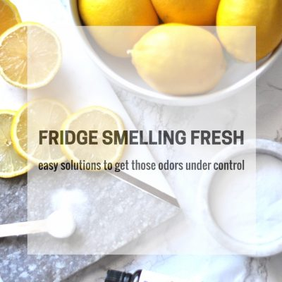 Fridge Smelling Fresh