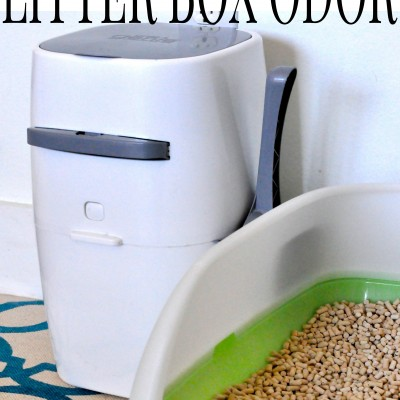 No More Litter Box Odor