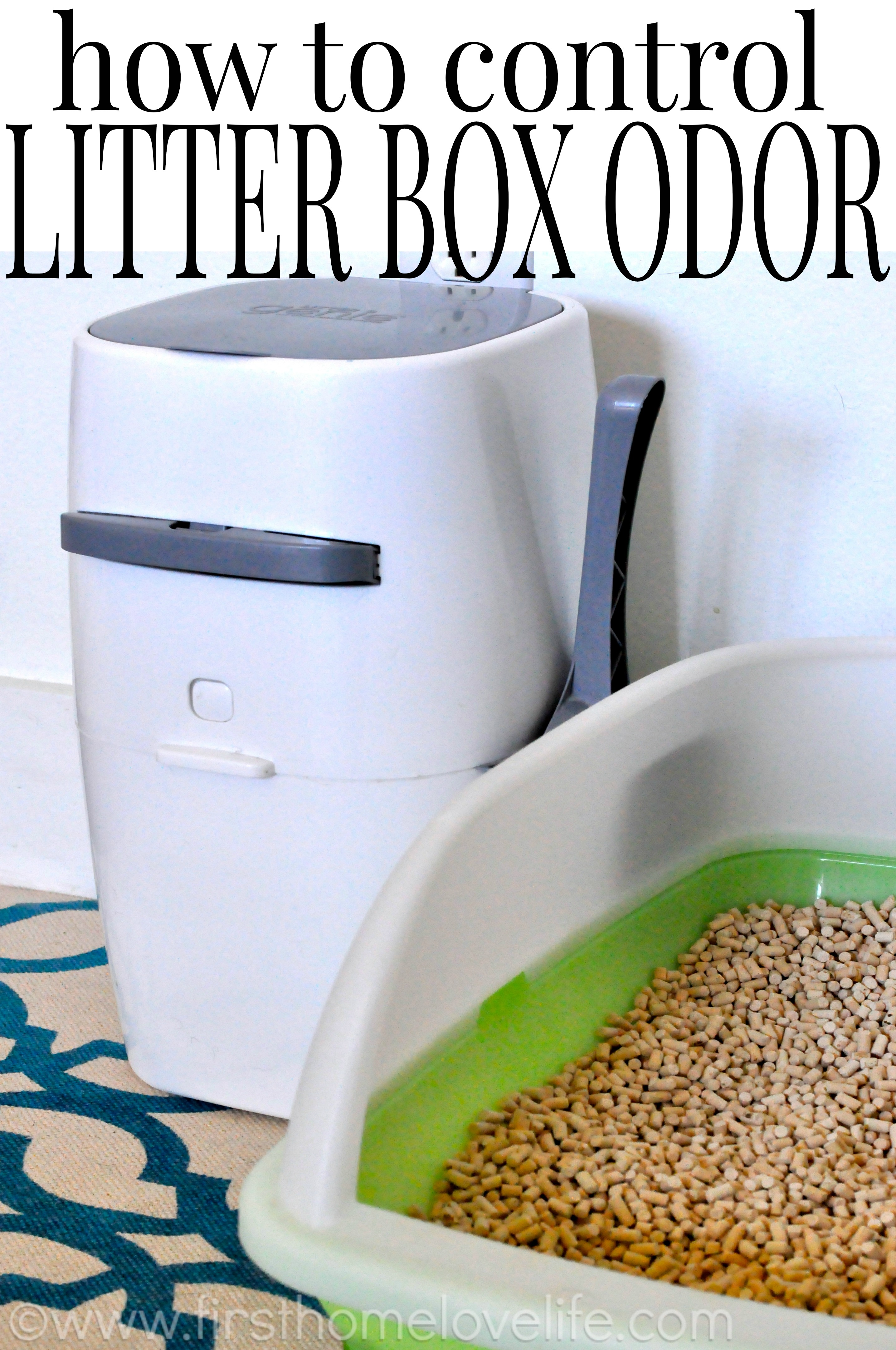 No More Litter Box Odor First Home Love Life