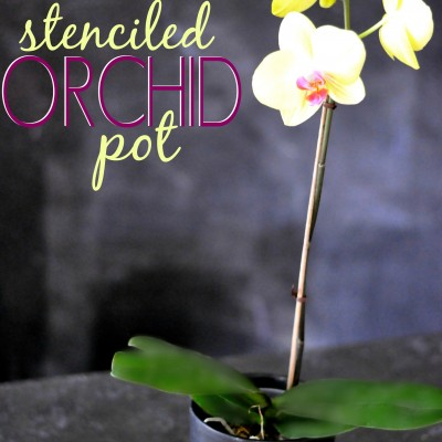 Stenciled Orchid Pot