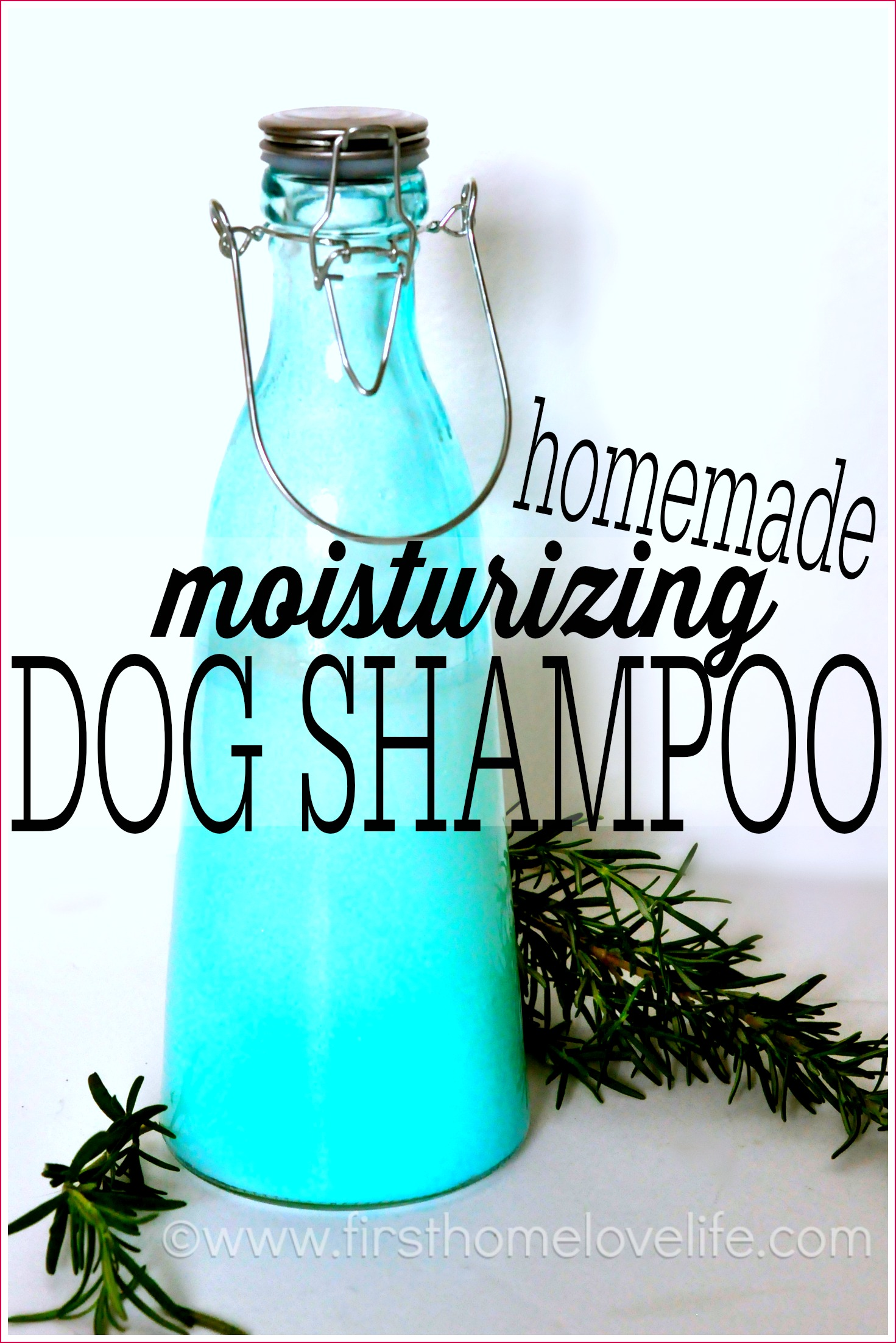 Homemade Dog Shampoo - First Home Love Life