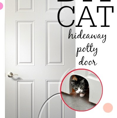 DIY Cat Potty Door