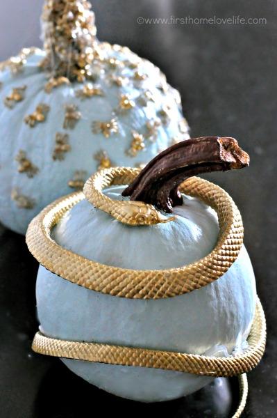 gold snake pumpkin