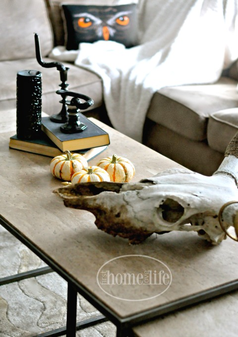 Inexpensive Halloween Decoration Ideas to DIY via firsthomelovelife.com