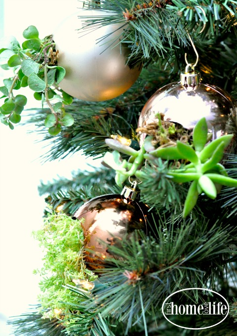 pretty-ornaments-for-christmas-tree-diy-succulent-ornaments-via-firsthomelovelife-com