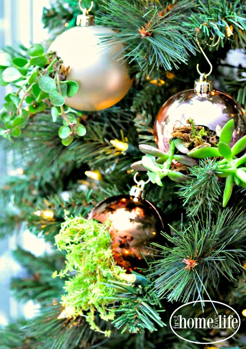 succulent-ornaments-on-chirstmas-tree-via-firsthomelovelife-com