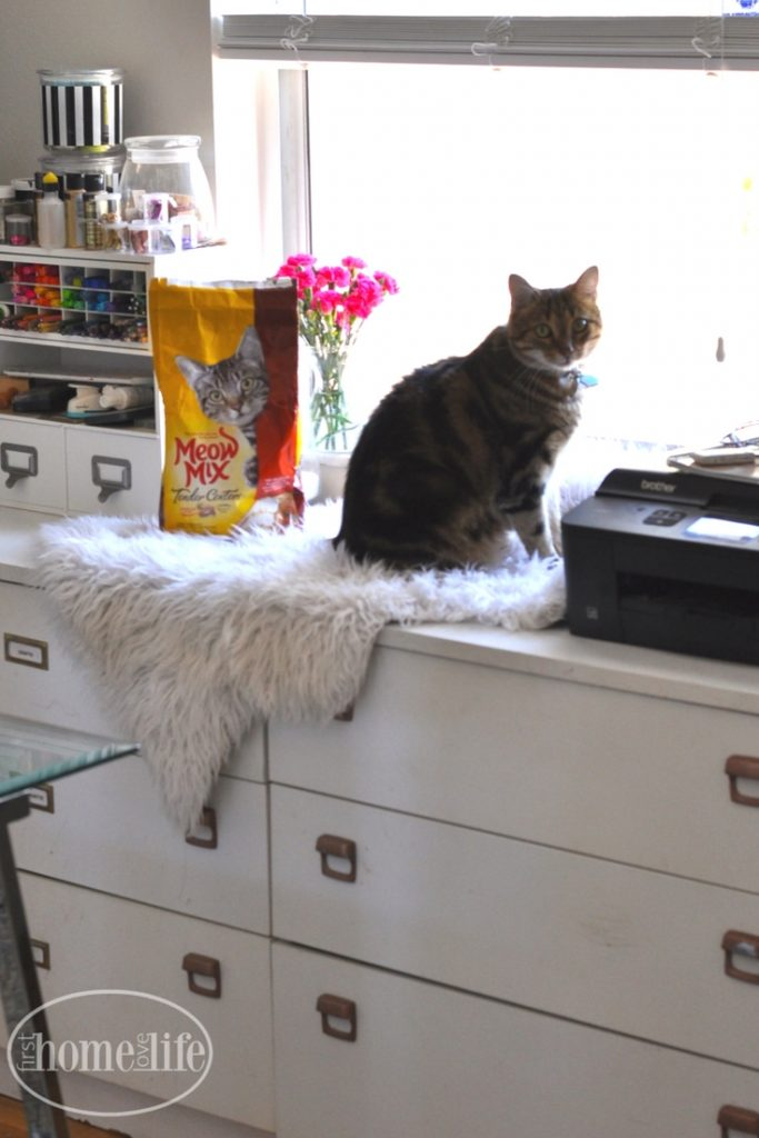 home office sneak peek with cozy cat corner | cat window perch ideas via firsthomelovelife.com