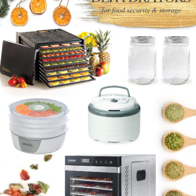 Best Dehydrators for Food Security and Storage