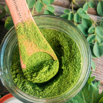 How To Make Your Own Kale & Moringa Powder