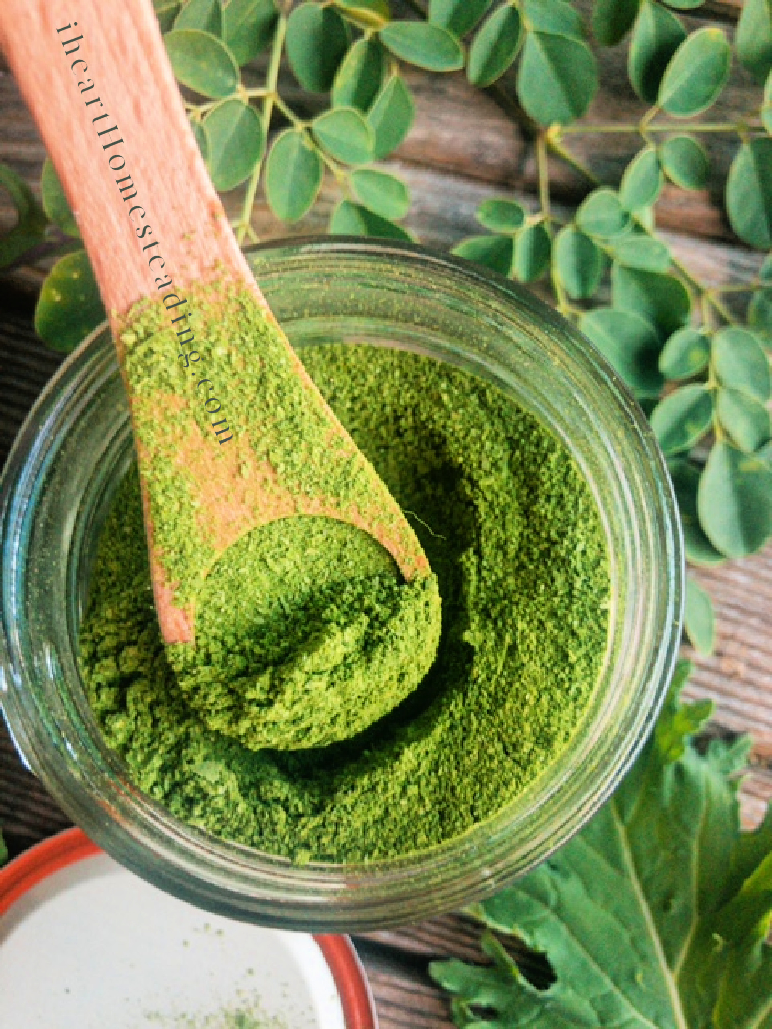 HOW TO MAKE YOUR OWN MORINGA POWDER | MAKE YOUR OWN SUPER GREENS AT HOME
